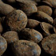 slagroom-truffels-1-metropolitan