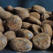 slagroom-truffels-metropolitan
