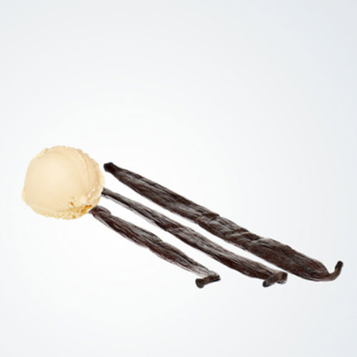 gelato-vanille-metropolitan-metropolitan